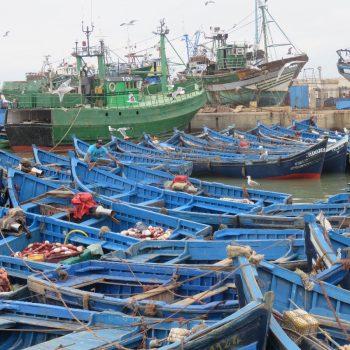 de prachtige blauwe vissersbootjes