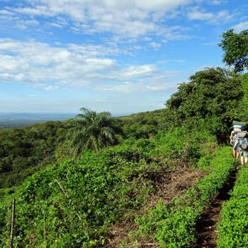 Hike naar vulkaan Telica met Quetzaltrekkers, Léon