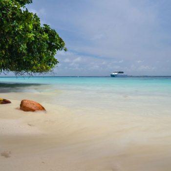 Heerlijke strand
