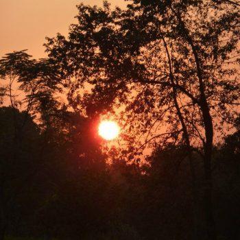 Zonsondergang Chitwan