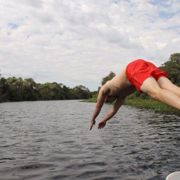Tussen de kaaimans zwemmen