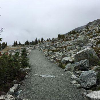 Mooie wandelpaden bij Whistler