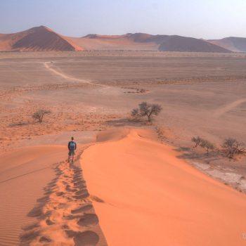 Grote duin beklimmen naast Dune 45