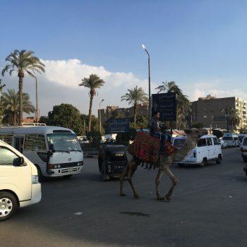 Ook dit kan in Egypte