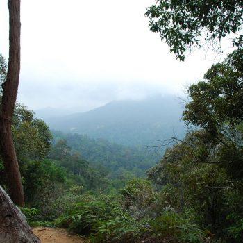 boven bij de taman negara