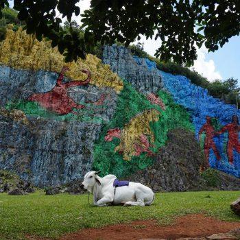 Muurschilderingen in een mooi omgeving