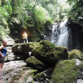 Yasuní National Park
