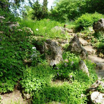 De botanische tuin in Zagreb