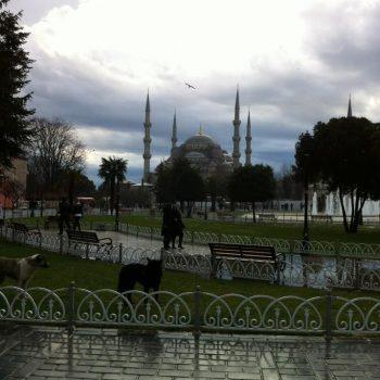 De mooiste moskee van Turkije