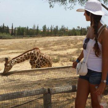 Een bezoekje aan het dierenpark