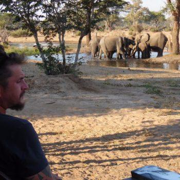 je eigen terras vlakbij de olifanten