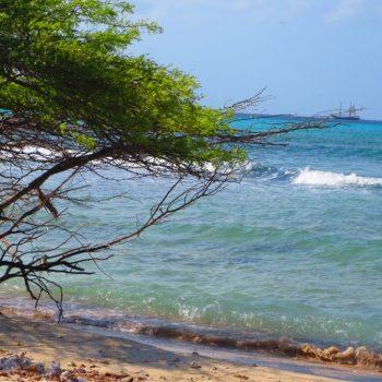 verlaten strandje Aruba