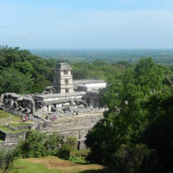 Uizicht over de tempels van Palenque