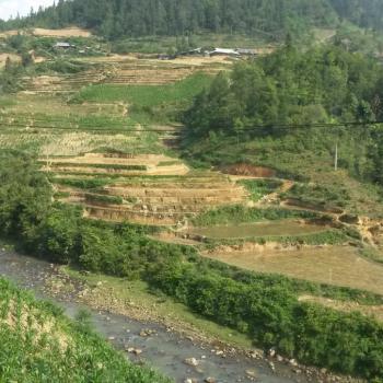 Sapa, trekken door de bergen en rijstvelden