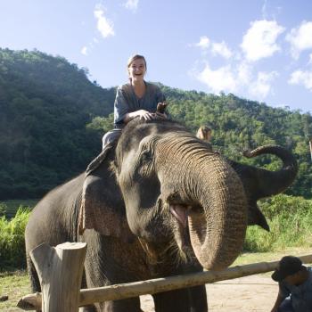 Elephant Mahout course