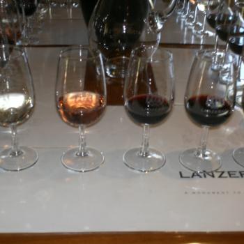 Proeverij op een winefarm
