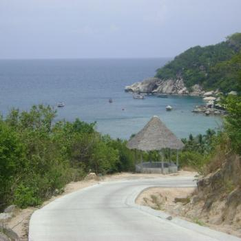 Koh Tao - Viewpoints