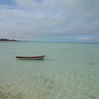 Zanzibar, een pareltje.