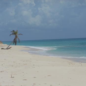 De hagelwitte stranden..
