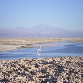 Zoutmeer San Pedro de Atacama