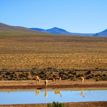 Mooie landschap van Peru