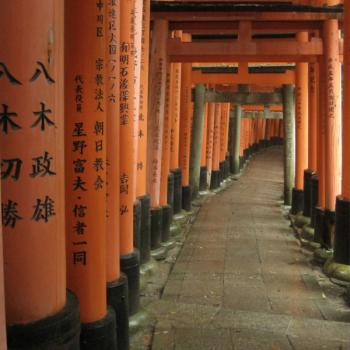 Fushimi-inari taisha, endless shrine gates