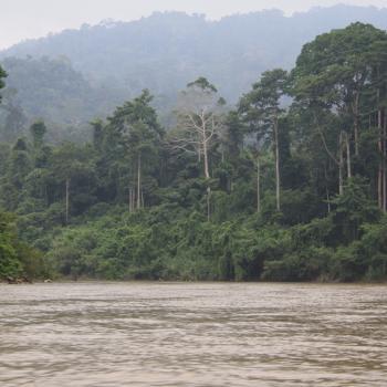 Kolkende rivier in de Taman Negara