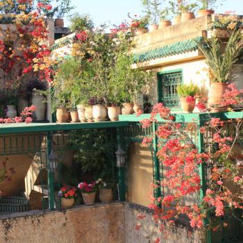 Het hotel in Fez met de mooie bloemen.