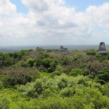 Het uitzicht van de hoogste tempel in Tikal