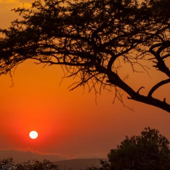 Adembenemende zonsopkomst in Zuid-Afrika