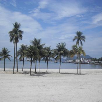 Witte stranden en palmbomen op paradijselijk Ilha Grande