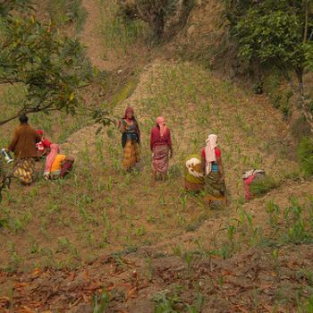 Tijdens de trekking door het Annapurna massief