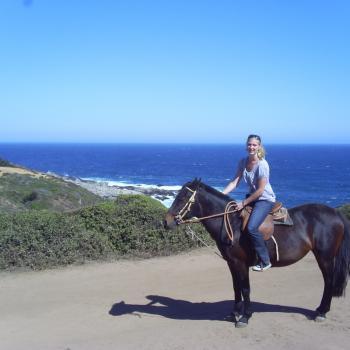 Paardrijden in punta de piedro, 30km van valparaiso