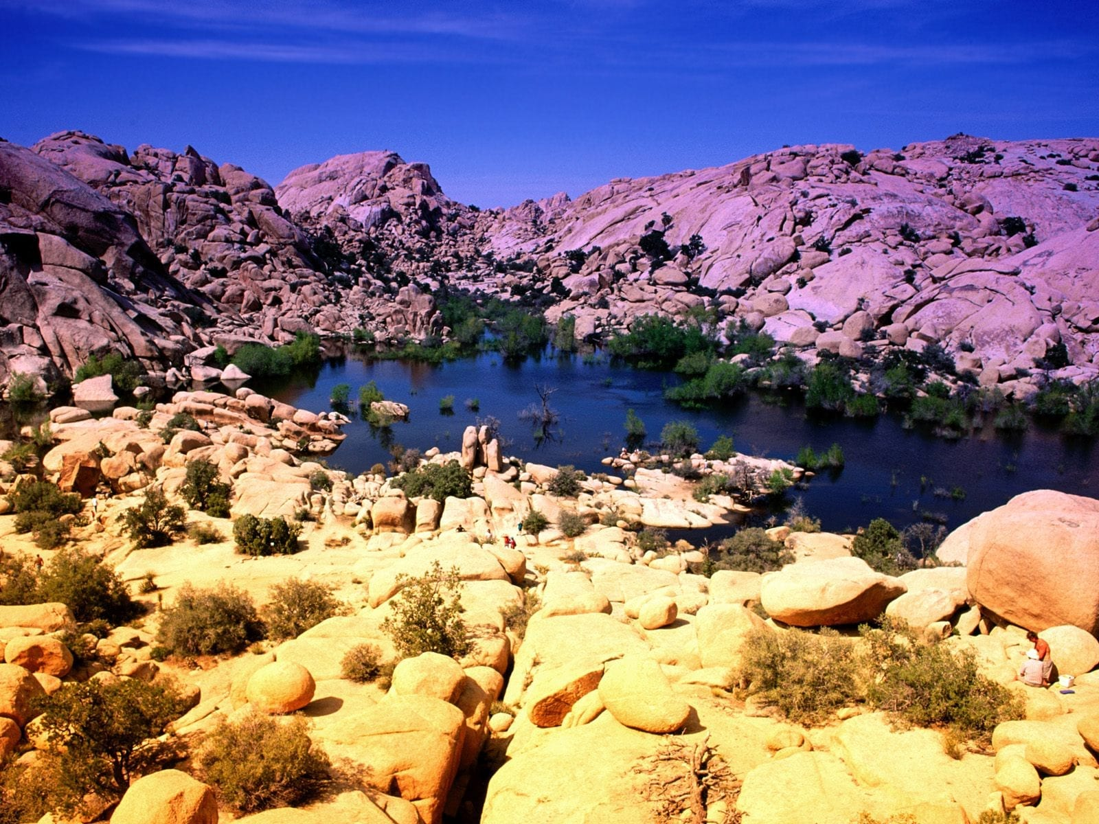 Joshua-Tree-National-Park-