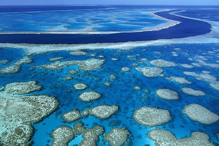 Duiken bij het Great Barrier Reef in Australië