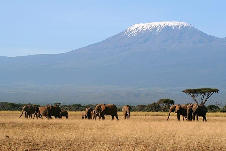 De Kilimanjaro beklimmen in Tanzania