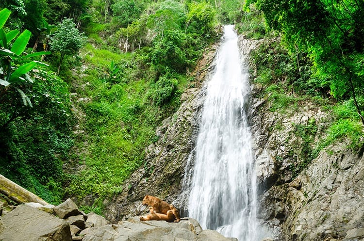 Namtok Khun Kon Forest Park