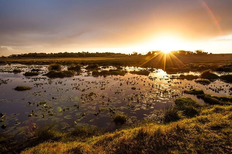 Het iSimangaliso Wetland Park
