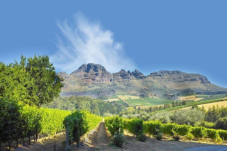 Stellenbosch omgeving
