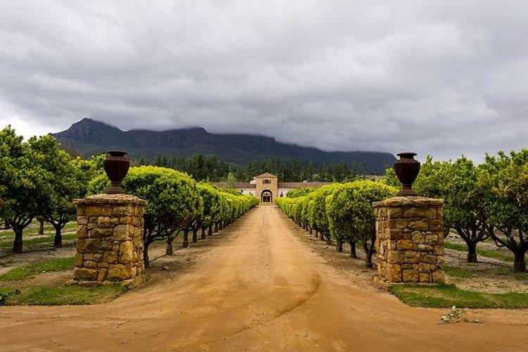 Stellenbosch wijn estate