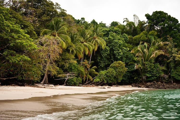 Manuel Antonio National Park strand
