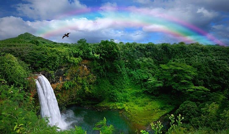 Waterval op Kauai eiland