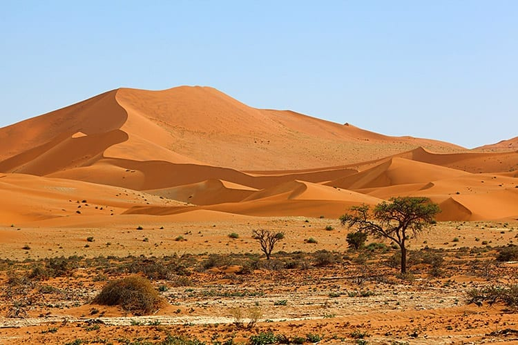 Zandduinen in het Namib-Naukluft National Park