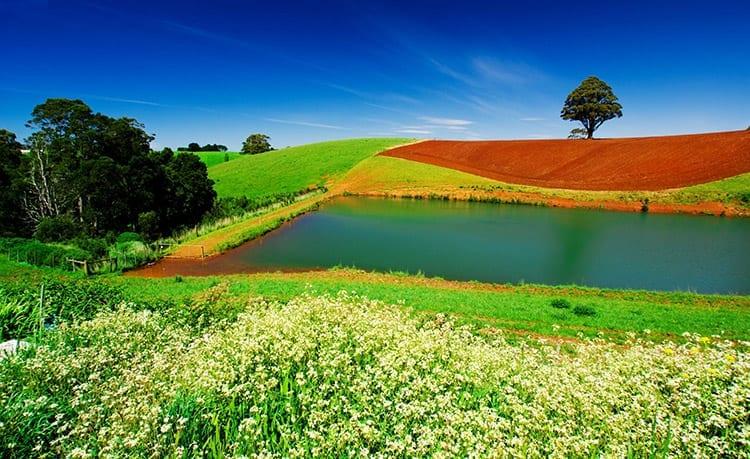 Het binnenland van Tasmanië
