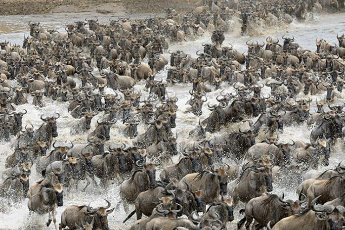 Kenia Mara-rivier