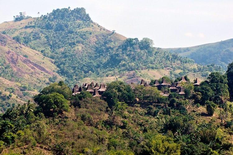 Traditioneel dorp op Sumba