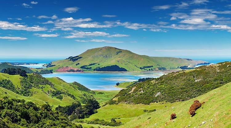 Het Otago Schiereiland