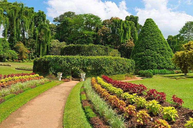Royal Botanic Garden, Kandy