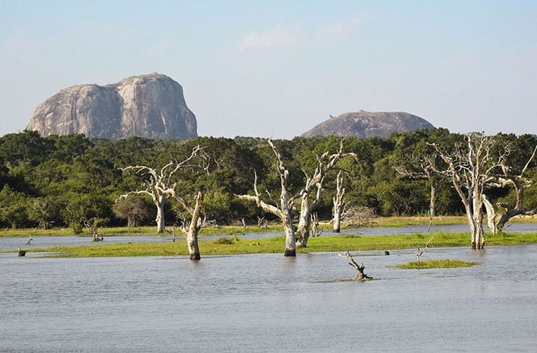 Yala National Park Elephant Rock