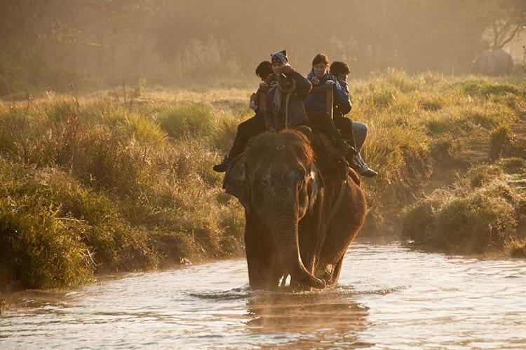 Chitwan olifanten centrum